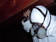 Photo Gallery House Investigations