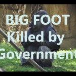 bigfoot-sasquatch-being-secretly-killed-by-government_thumbnail.jpg